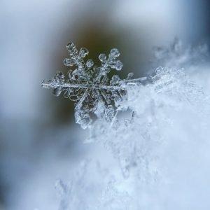Snow Detail in winter scenes.