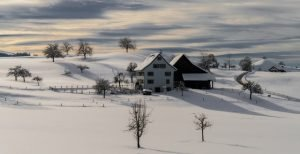 7 Tips to photographing winter scenes use shadows